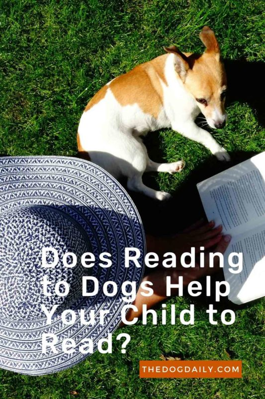 Does Reading to Dogs Help Your Child to Read