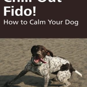 Chill Out Fido 2 thedogdaily.com