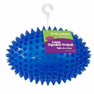 Gnawsome Spiky Squeaker Football Dog Toy - Large 6 thedogdaily.com