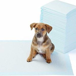 AmazonBasics Dog and Puppy Potty Training Pads 11 thedogdaily.com