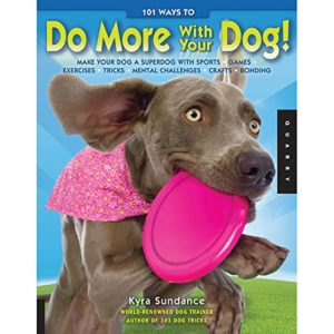 Do More with Your Dog thedogdaily.com